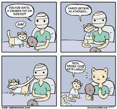 Doutor Gato, o fabuloso.