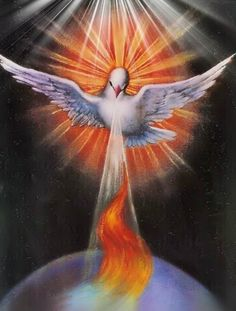 Holy Spirit Dove pouring out anointing. Prophetic Art.