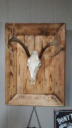 Framed from pallets Framed from pallets European Mount Deer Hunting Decor, Deer Decor, Bow Hunting, Antler Mount, Antler Art, Pallet Frames, Pallet Art, Deer Skulls, Deer Antlers