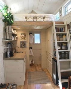 196-square-feet tiny house with a loft bedroom, living/dining space, and the perfect kitchen