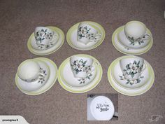 Here are the Wild Roses Cups, Saucers & Plates