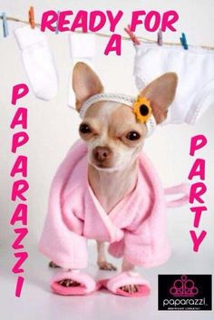 Facebook party, Paparazzi Accessories with Alicia Zeller #24034