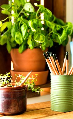 Sprout Pencil is your best friend. A splendid way to recycle and give back to the environment.  Check it out==> http://gwyl.io/sprout-pencil-herb-pack/