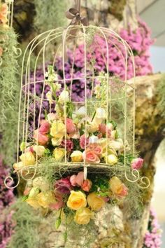 colorful-flowers-in-cage - GORGEOUS!