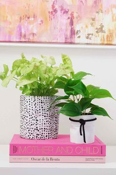Easy no-sew DIY project! Make these fun modern fabric planters and personalize your favorite potted plants! #modernglam #moderndiy #moderncraft #urbanjungalow #diypot #diy