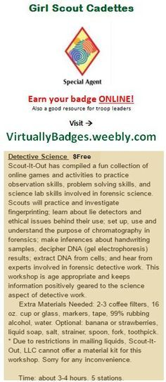 Special Agent Girl Scout Cadette badge earned online!