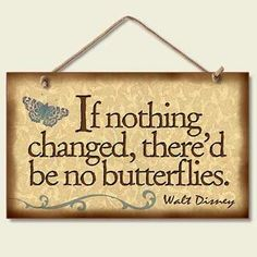 Walt Disney - If nothing changed, there's be no butterflies.