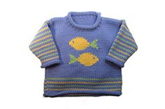Fish Pullover by Gail Pfeifle of Roo Designs, pattern available on Ravelry.