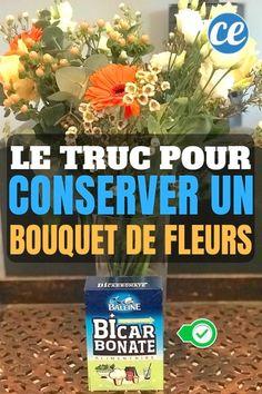 L'Astuce+De+Mon+Fleuriste+Pour+Faire+Durer+un+Bouquet+de+Fleurs+PLUS+LONGTEMPS. Life Hacks, Durer, Buenas Ideas, Tips, Nature, Hydrangeas, Point, Conservation, Bouquets