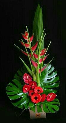 Cool tropical arrangement with gerbera daisies, anthurium, and heliconia Contemporary Flower Arrangements, Tropical Flower Arrangements, Creative Flower Arrangements, Flower Arrangement Designs, Ikebana Flower Arrangement, Church Flower Arrangements, Ikebana Arrangements, Beautiful Flower Arrangements, Flower Centerpieces