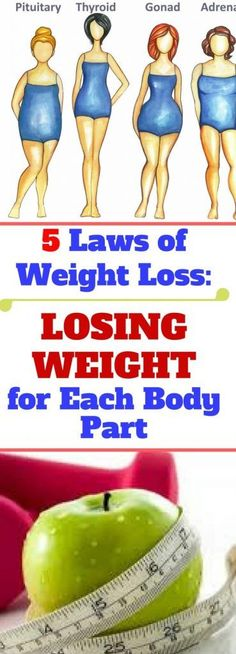 5 Laws of Weight Loss: Losing Weight, for Each Body Part! Read more!!!!