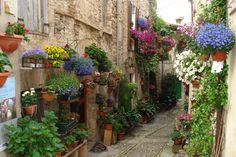 BEAUTIFUL SPELLO ALLEY, ITALY