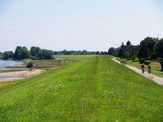 Radweg entlang der Elbe/Elbmarsch Golf Courses, Country Roads, Paintings