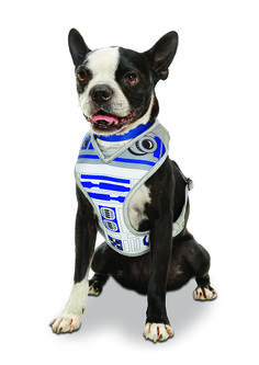 STAR WARS ™ R2-D2 ™ Dog Harness