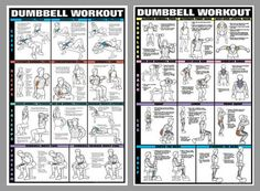 Dumbbell Workout 2-Poster Combo - Fitnus Posters Inc.