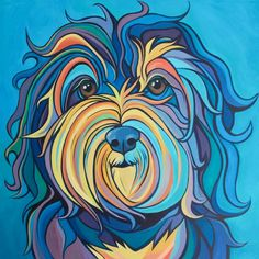 Hutch the Sweet Havanese by Emily Zimmerman