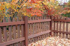 Gothic-Autumn-Inside-Corner-web-email by Woodshades, via Flickr
