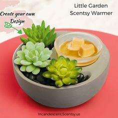 Adorable Scentsy Garden Warmer - create your own look!NEW for Scentsy Fall Winter 2017. Available to purchase online September 1, 2017!
