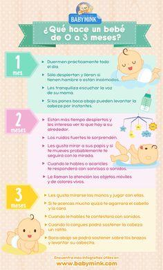 que hace un bebé de 0 a 3 meses_Baby Mink
