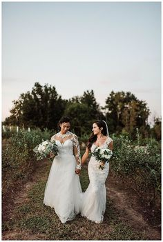 Romantic wedding photo Lesbian wedding photography kiss A Winery Wedding with a Modern Botanical Theme Lesbian Wedding Photos, Lesbian Wedding Photography, Romantic Wedding Photos, Lgbt Wedding, Romantic Weddings, Wedding Venues, Bridal Photography, Wedding Portraits, Wedding Pictures