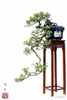 Bonsai Tree Types, Bonsai Trees, Miniature Trees, Bonsai Garden, Terrarium, Landscape, Wallpaper, Gardening, Modern