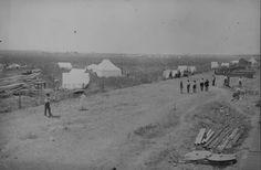 Anadarko Townsite [OkIa. Terr.] Aug. 6, [1901]--a cornfield.