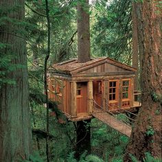 Treehouse Point in Fall City, Washington. Located only 30 minutes outside of Seattle, Treehouse Point offers many different options for your vacation. Each one allows visitors a tranquil private home to enjoy the quiet and listen to the birds. BONUS: Want a treehouse of your own? They have designers who can help create a space just for you!