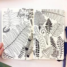 Day 15, Fern It's already half way down! #CBDrawADay #creativebug #doodle #sketchbook #moleskineart #linedrawing #fern