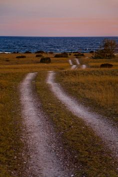 'Small road meandering towards the sea on Gotland, Sweden' by kbhsphoto on artflakes.com