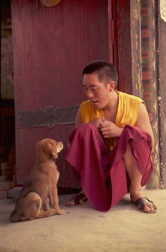 Kindness to animals should be our first priority ! It's good Karma ! Friends at monastery in Ladakh, India