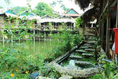 This Mai Chau Homestay with rooms on stilt houses, terraces facing a large pond and an amazing view of rice fields is a true haven from the busy capital! Farm Stay, Countryside, Pond, Fields, Terrace, Things To Do, Beautiful Places, Asia, Plants