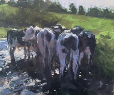 Graze, oil painting of cows by Haidee-Jo Summers