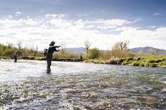 Fly Fishing Tips