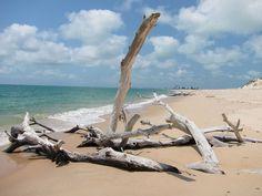 28-mozambique-plage