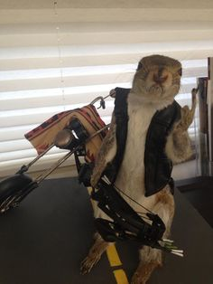 In Norman Reedus' Atlanta-based studio office...yippee!