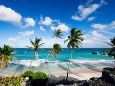 Explore the silky sands and turquoise surf of the Caribbean's finest beaches.