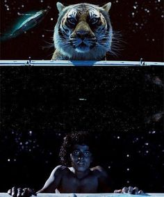 Life Of Pi Quotes I Love You Richard Parker : Life of Pi on Pinterest Life Of Pi, Life Of Pi Quotes and Hindus