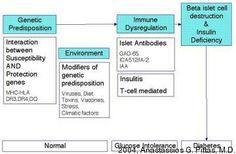 Type 1 Diabetes Pathophysiology Diagram Diabetes Life Guidelines