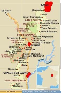 Burgundy wine map france Burgundy Wine Map, Burgundy France, Champagne Region France, French Wine Regions, Beaune France, Cote De Beaune, Wine Vineyards, Wine Guide, Italian Wine