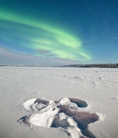 Last night in Muonio, Finnland, tour guide Antti Pietikäinen made a snow angel, then hopped up and took this picture ~