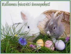 Happy Easter, Steampunk, Rabbit, Animals, Magic, Education, Happy Easter Day, Bunny, Rabbits