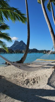 Bora Bora with a certain beautiful Senora. :)send me here!!!!