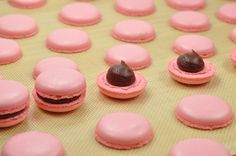 Cranberry Ganache Filling for Macarons