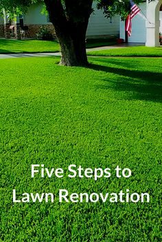 Watch this video to learn five steps to lawn renovation that focus on improving…