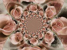 Multiple Beauties by Clare Bevan  #pinkroses #vintagephotography #fractalart