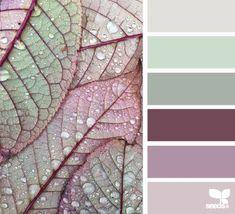 Ideas For Bathroom Colors Palette Design Seeds Design Seeds, Paint Schemes, Colour Schemes, Color Combos, Combination Colors, Palette Design, Colour Pallette, Vintage Colour Palette, Color Balance
