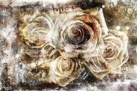 I have just published Urban Roses on Artfinder