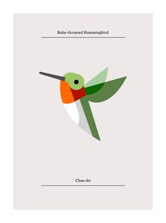 Ruby-throated Hummingbird, Flora and Fauna series, Birds edition - Josh Brill