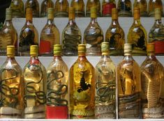 Snake Wine --  10 Most Odd and Bizarre Food in World People Eat http://www.buzzodd.com/10-most-odd-bizarre-foods-world-people-eat/