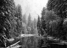 Yosemite, Yosemite Valley, Yosemite National Park, Merced River, Bill Gallagher Photography